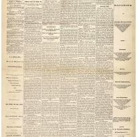 Newspaper Coverage of Bill to Give Women Suffrage, Jan. 11, 1878