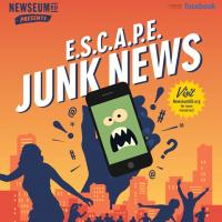 Junk News poster image